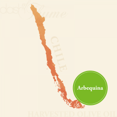 Arbequina Extra Virgin Olive Oil, Medium