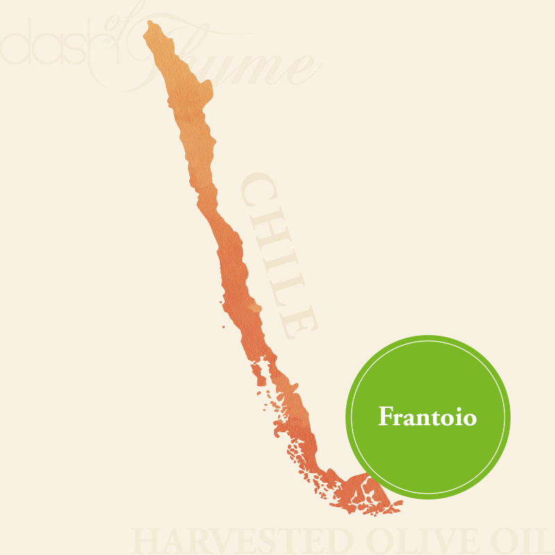 Dash of Thyme—Chile Frantoio Extra Virgin Olive Oil