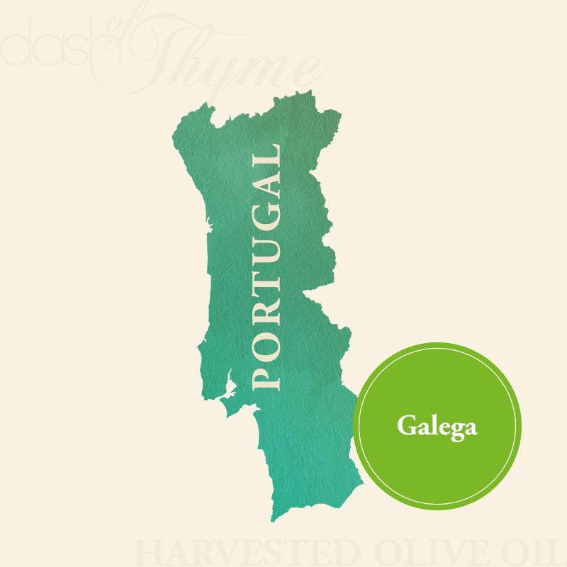 Dash of Thyme—Portugal Galega Extra Virgin Olive Oil