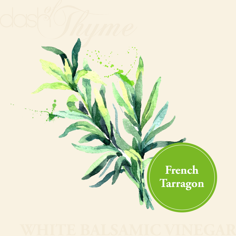 Dash of Thyme—French Tarragon White Balsamic Vinegar